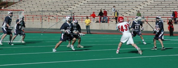 joel mccready nll box lacrosse cornell university lax