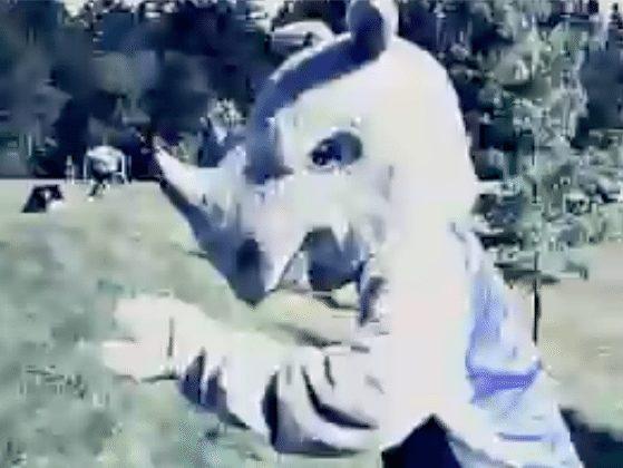 Rhino Lacrosse Head