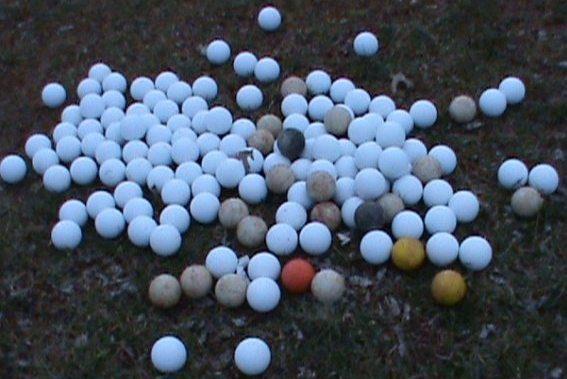 Trent's got a lot of balls.