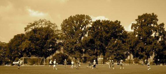 Salt Shakerz Invitational NYC trees lacrosse