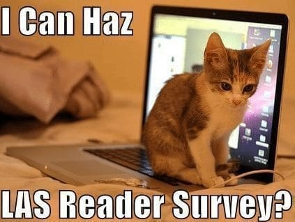 Lol cat lacrosse survey computer