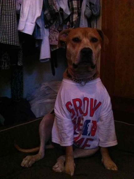 Mr. Bonzai Bean Grow the game lacrosse lax dog shakerz