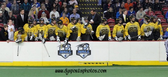Kentucky Stickhorses box lacrosse NALL