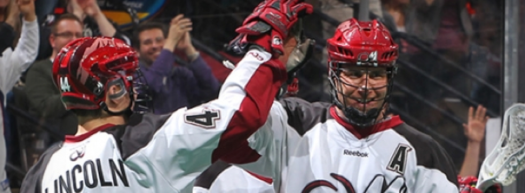 NLL HeadWrapz Colorado Mammoth