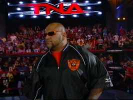 Taz with the TNA