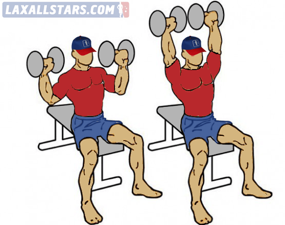 DB Shoulder Press