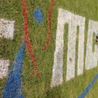 The #MCLA2012 logo held up well!