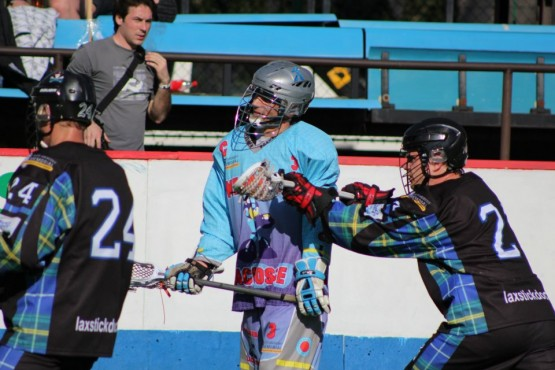 prague box lacrosse crosscheck
