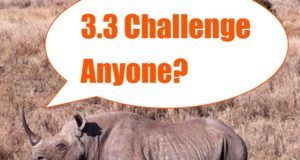 rhino_3.3_challenge
