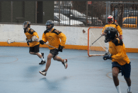 NYC Box Lacrosse - The LAS Defense
