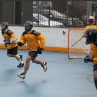 NYC Box Lacrosse - The LAS Defense