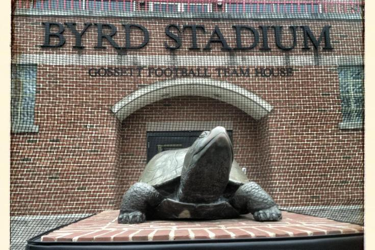 maryland_terp_turtle