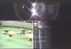 NLL_trophy