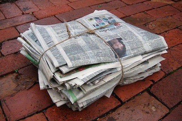newspaper, crossword puzzle