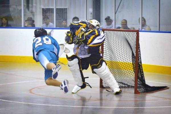 Jr. swarm box goalie
