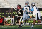 MLL Predictions