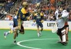 Jesse King Anthony Cosmo Buffalo Bandits Georgia Swarm NLL 2016 Photo: Micheline V