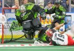 Saskatchewan Rush Calgary Roughnecks NLL 2016 Photo: Calvin So